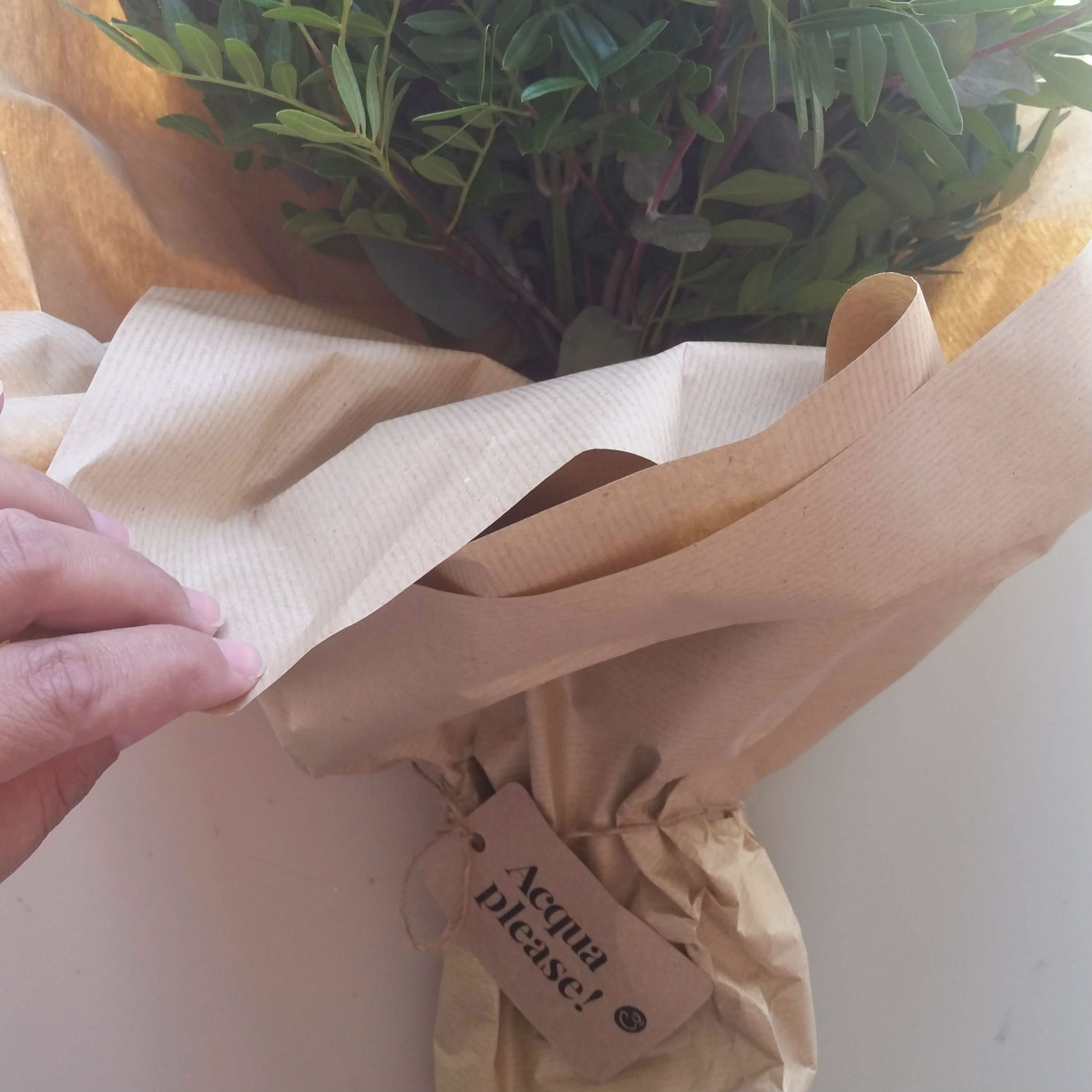 Una sola richiesta, immediata, da parte del bouquet: acqua!