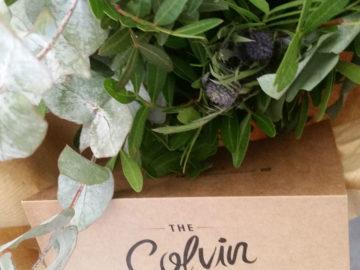 The Colvin