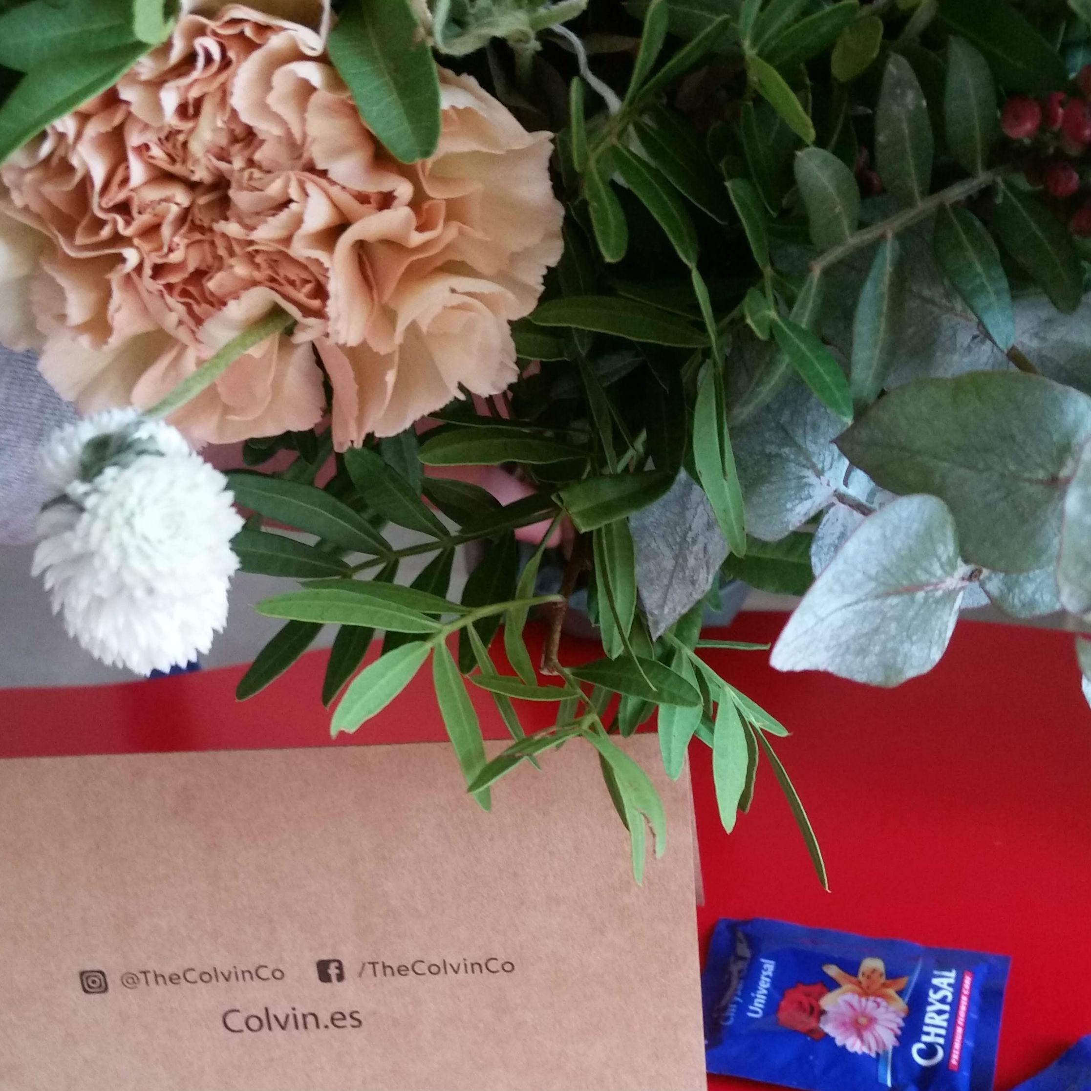 """Nel pacco trovi due bustine di """"nutrimento"""" per far durare più a lungo i fiori"""