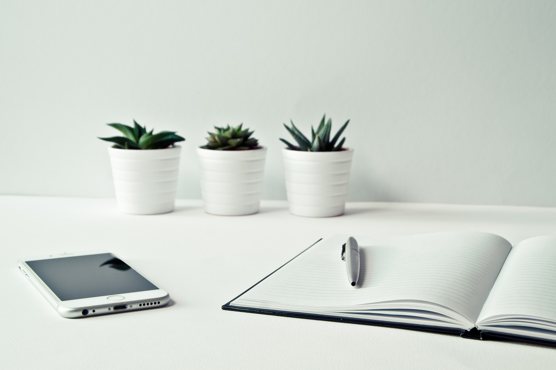 La tua postazione di lavoro può divenare un vero ufficio green!